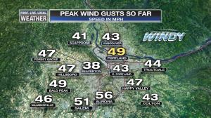 plot_wind_metro_peakgusts