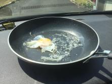 egg_end