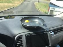 egg_start
