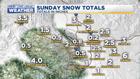 Snow Totals Metro Area