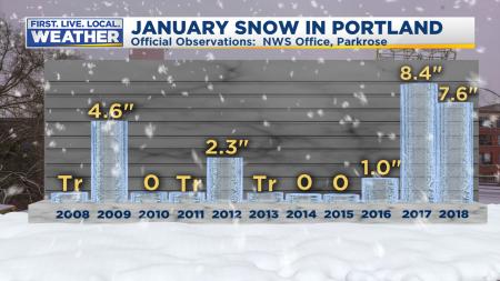 January Snow PDX