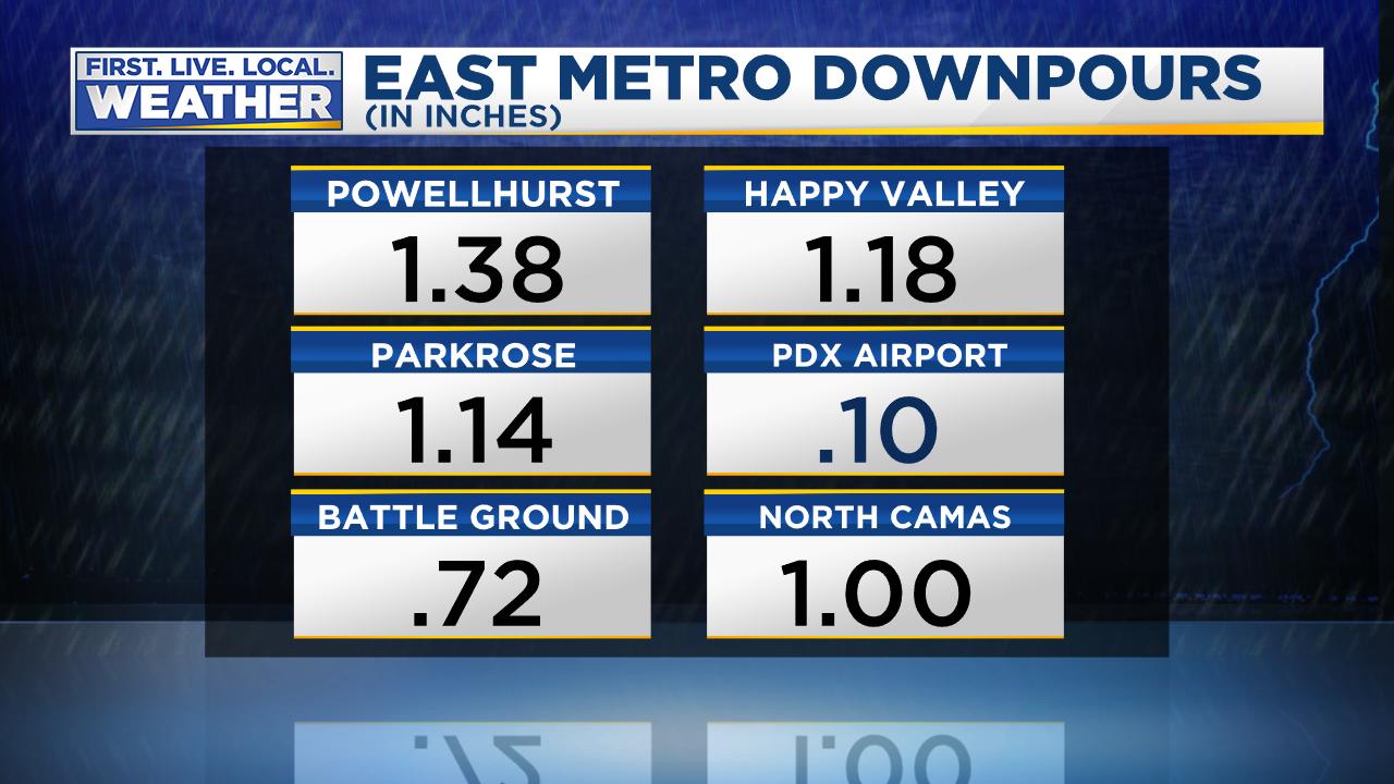 Rain Totals Metro Area