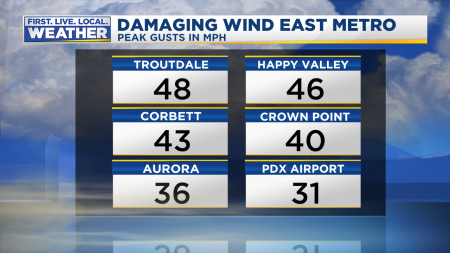 Wind Peak Gusts Text Panel