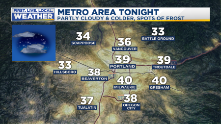 Forecast Tonight Metro