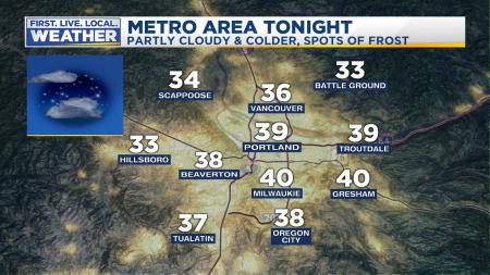 Forecast Tonight Metro