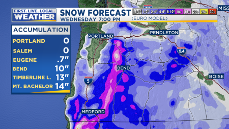 ECMWF Snow Accumulation Hourly