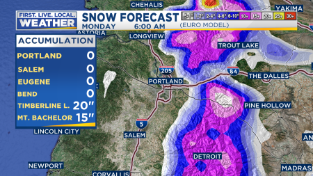 ECMWF Snow Accumulation Hourly